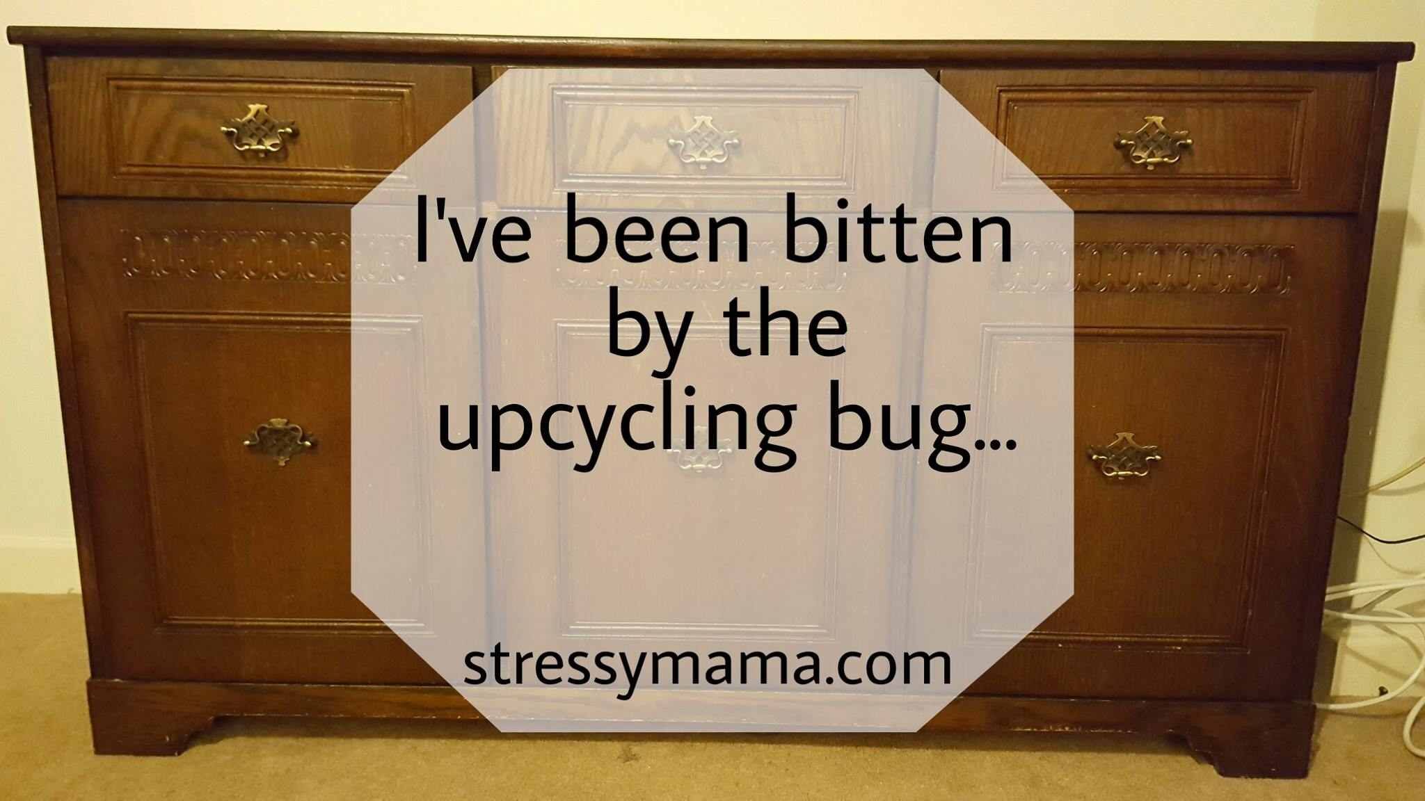 I Ve Been Bitten By The Upcycling Bug