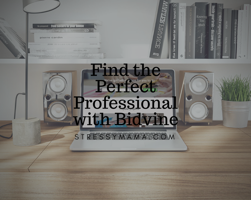 Find the Perfect Professional with Bidvine