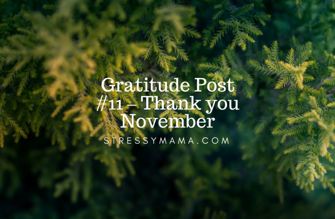 Gratitude Post #11 – Thank you November